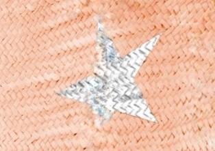 Star Salmon/Silver