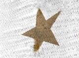 Star White/Khaki