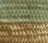 Bicolor Khaki/Gold