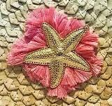 Étoile de mer Pink