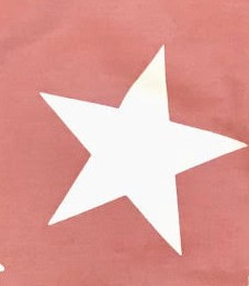 Rosa Estrella Blanca
