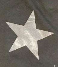 Gris Estrella Plata