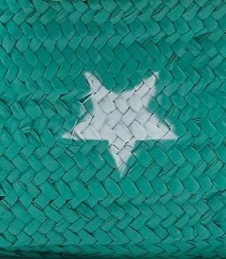 Verde 2021/Estrella Blanca