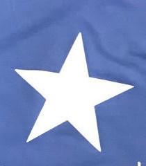 Azul Klein/Estrella Blanca