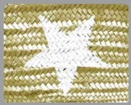 Star Gold/White