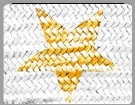 Star White/Gold